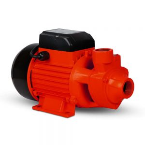 Electric Clean Water Pump 3300L/Hour 1/HP